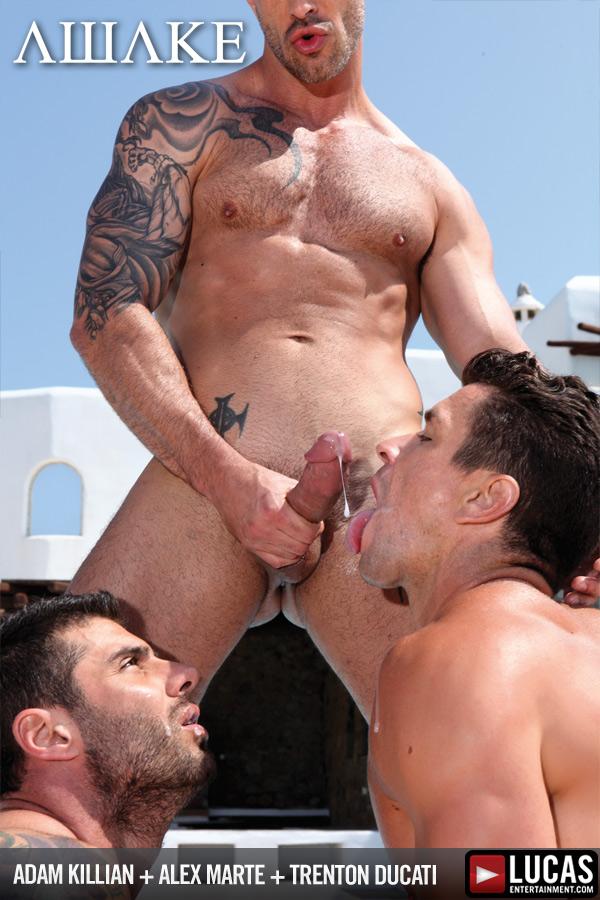 Alex trenton hot gay ass fucking and cock sucking