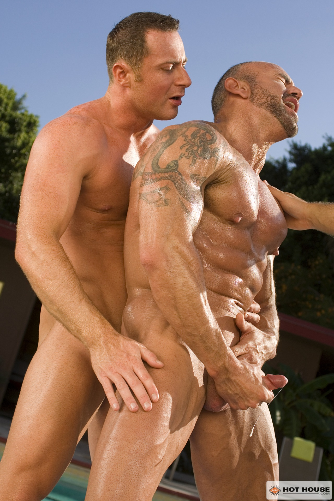 Free muscle gay sex download william gets