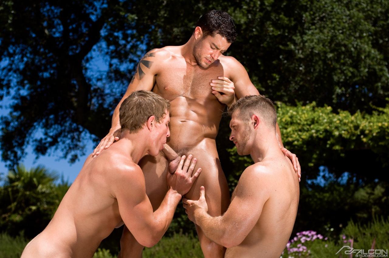 Поборка гей