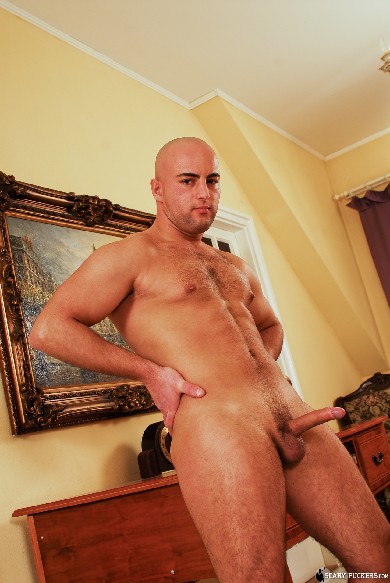 Muscle Porn Gay