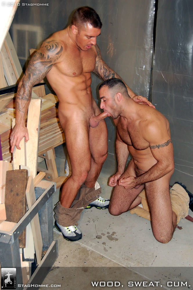 Gay cum sex galleries since both folks are 2