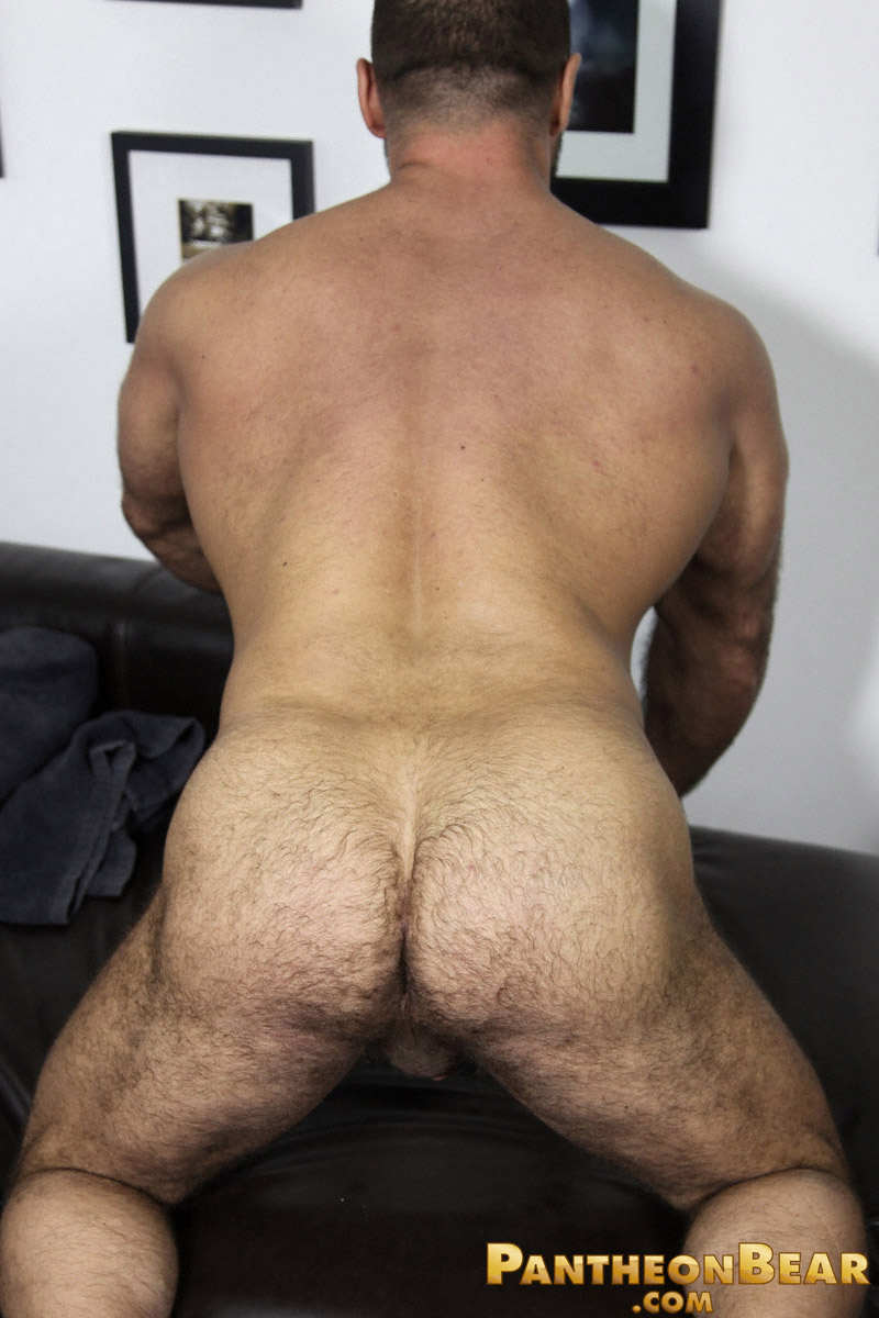 Guesshow Bear Showing His Ass