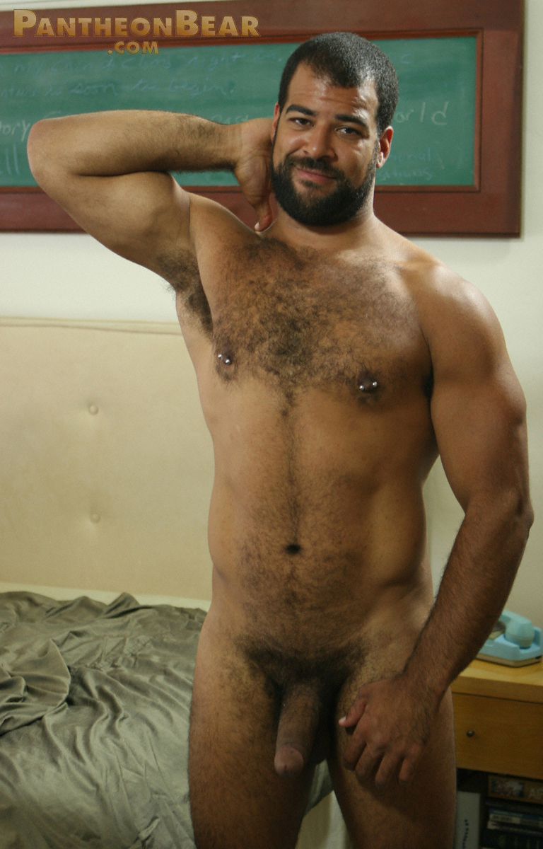 Gay Bear Galleries