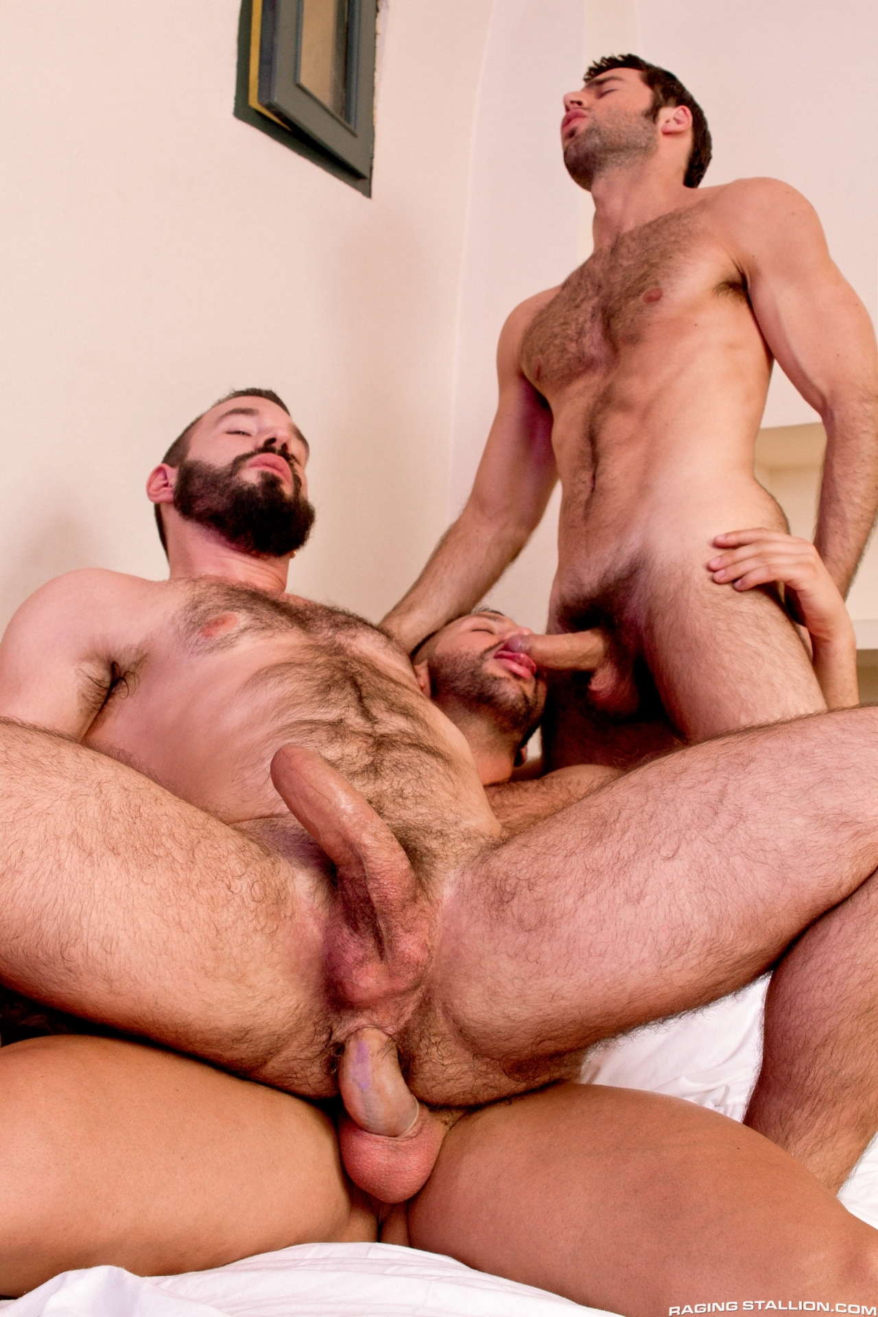 Gay anal threesome