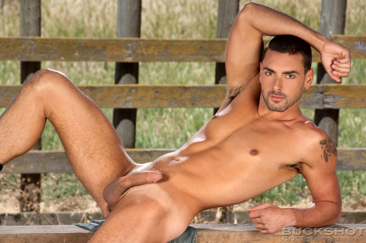 Male bodybuilders posing naked