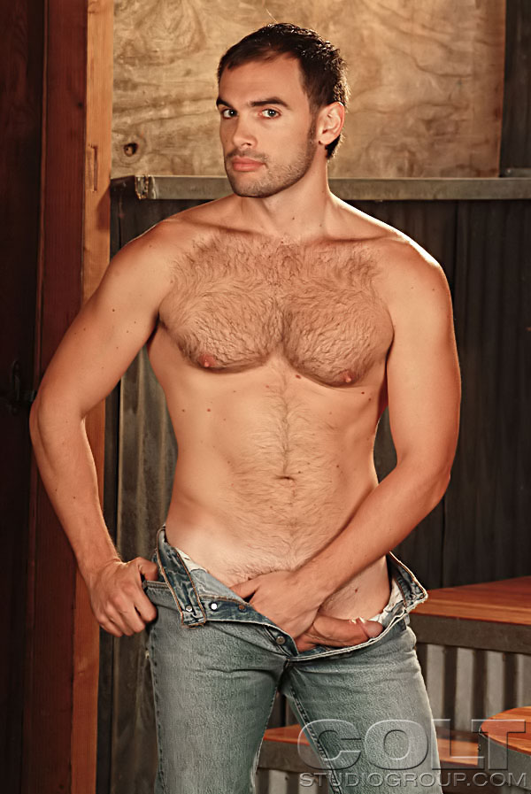 muscle stud gay porn