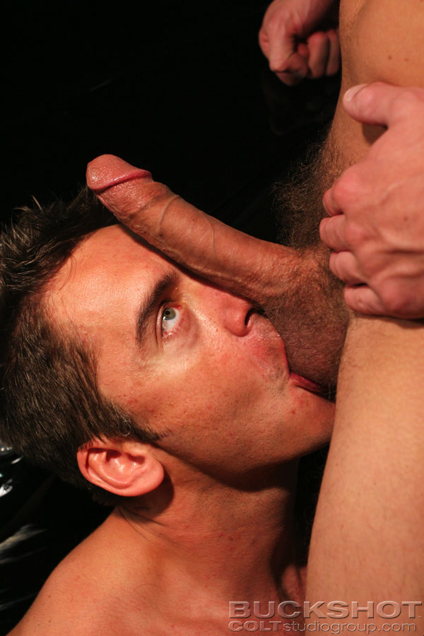 Free gay porn king sex movies these stud 7