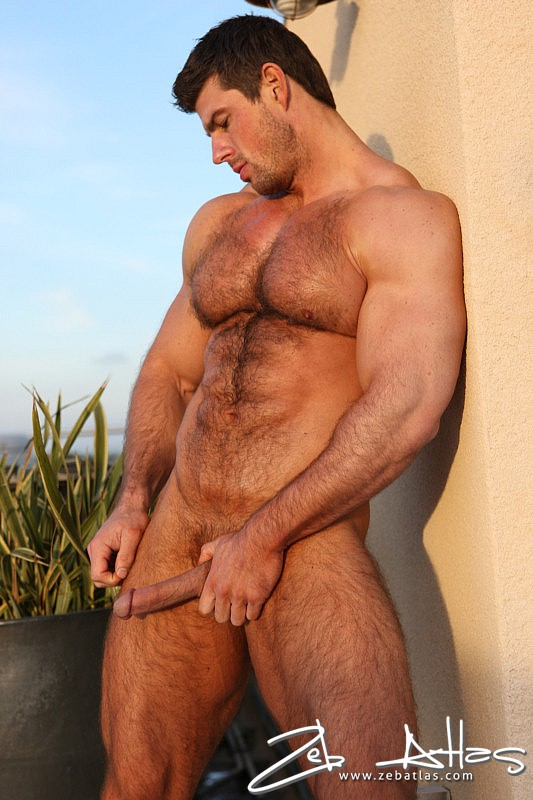 atlas muscle zeb Hairy